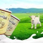 Sữa Dê – Những điều cần biết